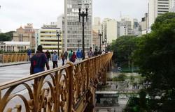 São Paulo plantará uma árvore para cada vítima de Covid-19 (Foto: Rovena Rosa/Agência Brasil)