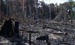 Governo prorroga presença das Forças armadas na Amazônia Legal (Foto: Arquivo / Agência Brasil)