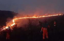 Incêndio criminoso destrói parque natural em Minas Gerais (Foto: CBMG/Divulgação)