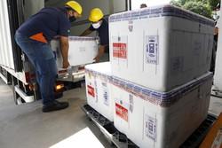 Pernambuco recebe novas doses de Coronavac  (Foto: Hélia Scheppa/Arquivo/SEI)