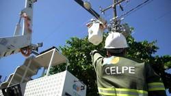 Celpe inicia 'Projeto Internet Segura' com remoção de cabos clandestinos em Vitória de Santo Antão (Foto: Divulgação)