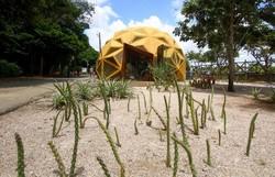 Em edição virtual, Mostra Ambiental de Cinema do Recife exibe filmes e palestras sobre meio ambiente   (Foto: Bruna Costa/Esp.DP)