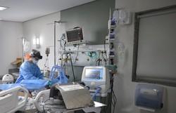 Pesquisa francesa confirma primeiro caso de infecção intrauterina de coronavírus (Foto: Douglas Magno/AFP)