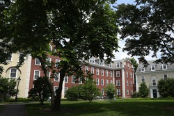 Harvard e MIT vão à Justiça para evitar que alunos sejam deportados dos EUA (Foto: AFP)