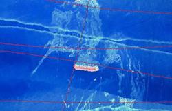 Ibama dá 24 horas para Vale detalhar situação de navio que afunda no mar (Foto: Ibama)