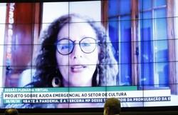 Câmara aprova projeto que destina R$ 3 bilhões ao setor cultural na pandemia (Foto: Maryanna Oliveira/Câmara dos Deputados)