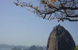 Rio de Janeiro terá Circuito Histórico do Bondinho Pão de Açúcar (Tânia Rego/Agência Brasil)