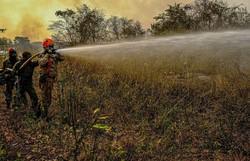 Governo manda Força Nacional para conter incêndios em Mato Grosso (Foto: Arquivo/Mayke Toscano/Secom-MT)