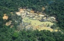 Justiça determina retirada de garimpeiros da Terra Indígena Yanomami (Foto: Exército/Divulgação)
