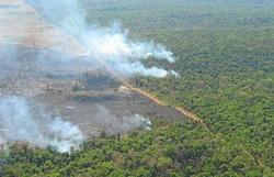 Amazônia tem 14º mês seguido de aumento de desmate, e derrubada em junho é a maior desde 2016 (Foto: Daniel Nepstad / Divulgação)