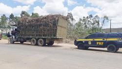 PRF emite 324 autuações por irregularidades em transportes na Zona da Mata pernambucana (Foto: Divulgação/PRF)