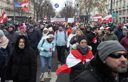 Manifestação de 10 mil pessoas contra o uso de máscaras em Viena (ALEX HALADA / AFP   )