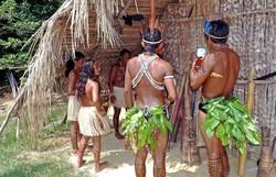Tribos indígenas da América do Sul pedem ajuda por causa da Covid-19 (Foto: Pixabay / Reprodução)