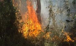 Bombeiros combatem há dois dias incêndio na Serra dos Órgãos (Foto: Parnaso / Divulgação)