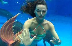 A Força do Querer: Zeca vê Ritinha trabalhando em um aquário, vestida como sereia. Confira o resumo do sábado