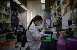 Coronavírus: pesquisa aponta redução nas taxas de poluição durante pandemia (Foto: ED JONES/AFP)