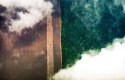 Amazônia: AGU consegue bloqueio de bens de desmatadores em Mato Grosso (Foto: Marcelo Camargo/Agência Brasil)
