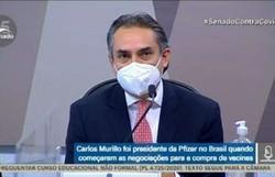 Representante da Pfizer diz que reuniões com o Brasil começaram em maio de 2020 (Foto: Reprodução/TV Senado)