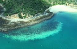 Grande Barreira de Coral da Austrália sofre seu pior branqueamento (Foto: HANDOUT / JAMES COOK UNIVERSITY AUSTRALIA / AFP)