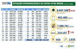 Covid-19: Brasil soma 214,1 mil mortes e 8,69 milhões de casos (Foto: Ministério da Saúde )
