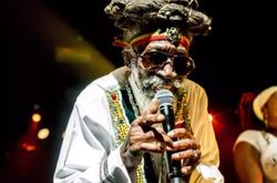 Morre a lenda jamaicana do reggae Bunny Wailer (Foto: MICHAEL BUNEL / NURPHOTO / AFP)