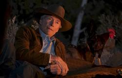 Crítica: Clint Eastwood vive calmaria do ícone cowboy em 'Cry Macho'
