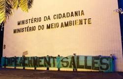 Ativistas ambientais protestam por impeachment de Salles em Brasília (Foto: Reprodução/Twitter)