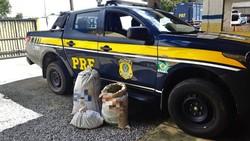 Quatro pessoas são detidas com 28 quilos de maconha em Caruaru