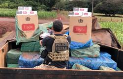 PF apreende no Paraná cigarros contrabandeados que viriam para Pernambuco (Foto: Divulgação/PF.)