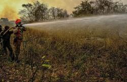 Inpe confirma aumento de quase 200% em queimadas no Pantanal (Foto: Mayke Toscano/Secom-MT)