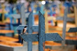 Pandemia é 'bomba-relógio' para o Brasil, afirma pesquisador (Foto: Michael Dantas / AFP)