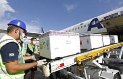Pernambuco recebe 40,6 mil unidades da Coronavac para segundas doses (Foto: Hélia Scheppa/SEI)