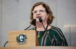 Teresa Leitão defende candidatura própria do PT ao governo do estado (Alepe/Divulgação)