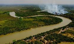 Senadores da Comissão do Pantanal aprovam cronograma de trabalho (Foto: Mayke Toscano / Secom - MT)