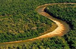 Fogo ameaça parque nacional e terras indígenas na Ilha do Bananal (Foto: Governo do Tocantis)