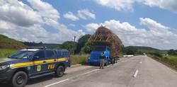 PRF fiscaliza transporte de cana-de-açúcar na Mata Sul de Pernambuco (PRF/Divulgação)