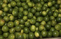 Ministério lança Rota da Fruticultura no Distrito Federal