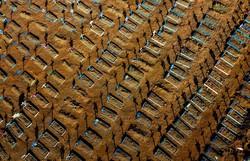 Covid-19: Brasil ultrapassa 70 mil mortes e 1,8 milhão de casos (Foto: Michael Dantas/AFP)