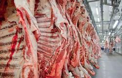 Em meio à pandemia, Brasil começa a exportar carne bovina para a Tailândia (Foto: Divulgação/Abiec)