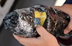 Cientistas rastreiam dejetos plásticos por satélite para limpar oceanos (Foto: Adek Berry/AFP)