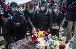 Mundo supera 19 milhões de casos de Covid-19 (Foto: ERNESTO BENAVIDES / AFP  )