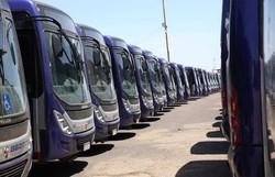 Petrolina aposta em plano de retomada com medidas sanitárias para retorno de 100% dos ônibus (Foto: Divulgação)