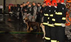 Governo prorroga Força Nacional no Presídio Federal de Brasília (Foto: Divulgação)
