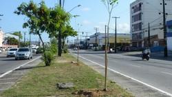 Avenida Mascarenhas de Moraes recebe obras de recuperação neste sábado (Inaldo Lins/Arquivo PCR)