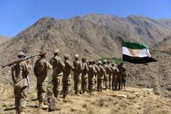 Talibã adotará 'temporariamente' a Constituição monárquica (Foto: Ahmad SAHEL ARMAN / AFP)