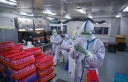 OMS assegura que vai enviar especialistas à China  para apurar origem do coronavírus (Foto: STR / CNS / AFP)