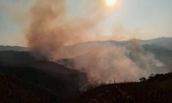 Outro incêndio atinge o Parque Estadual do Itacolomi, em Ouro Preto (Foto: Divulgação/Corpo de Bombeiros)