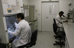 UFPE divulga plano de retomada gradual dos laboratórios de pesquisa (Júlio Jacobina /DP Arquivo)