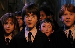 Netflix vai tirar Harry Potter do catálogo e notícia revolta fãs da saga (Foto: Reprodução/ Twitter)