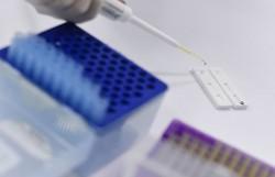 Coronavírus faz 3ª vítima em Minas Gerais; paciente tem 44 anos (Douglas Magno/AFP )